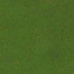 Зеленый (массив)